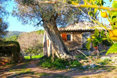 fachada-y-gallinero-1525452980